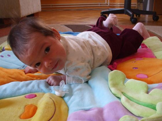 orlay13a: Sikos Boróka egy hónapos