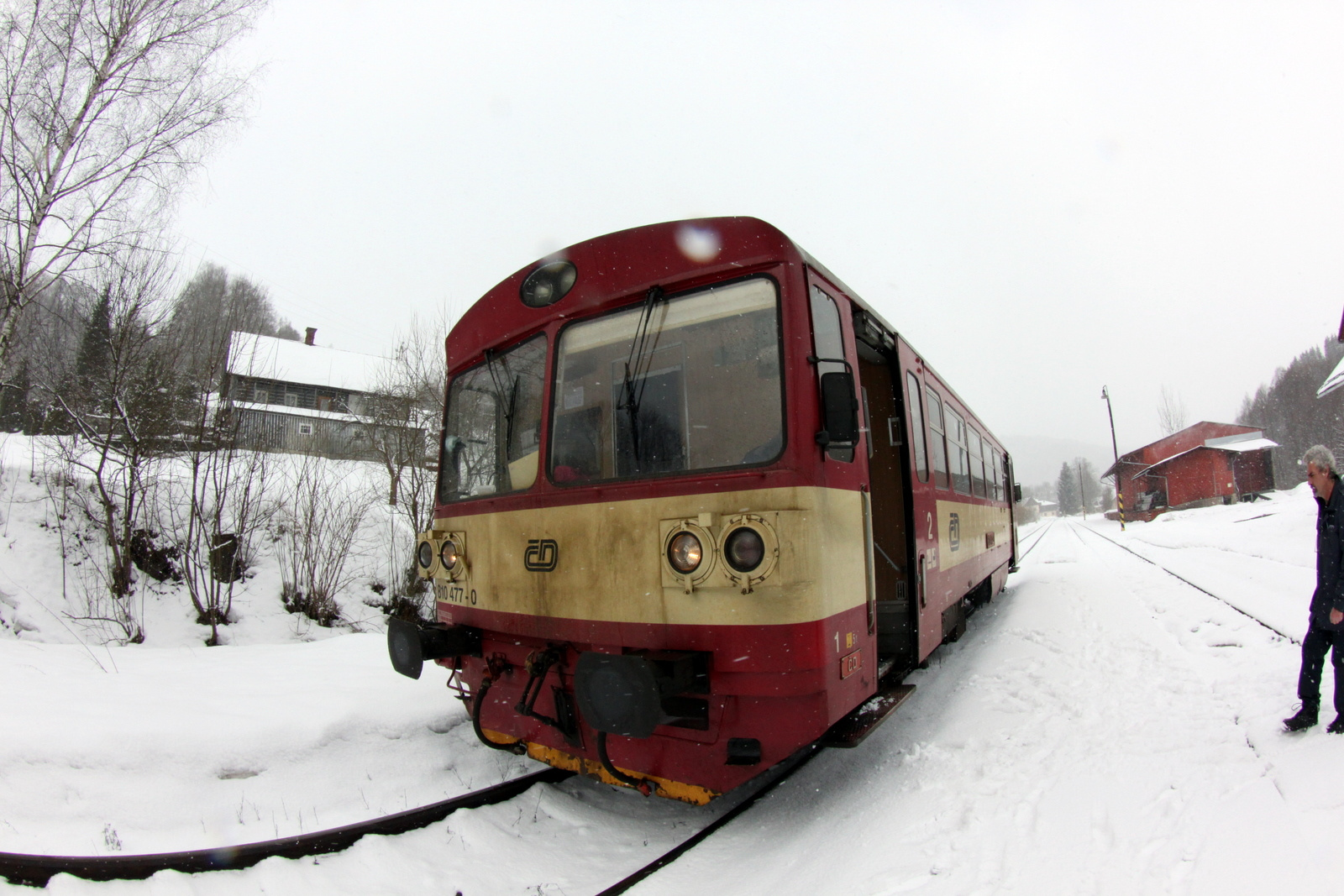 IMG 0341