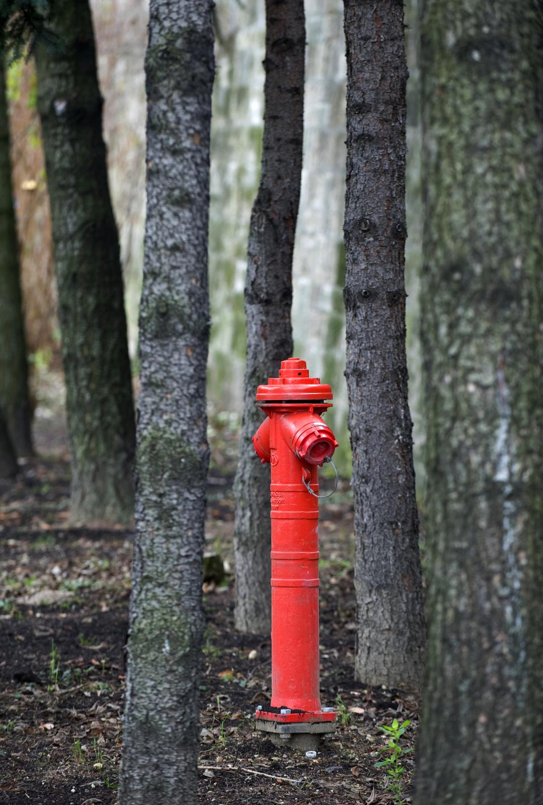 Egy szín, a vörös - Fazekas István -HVG