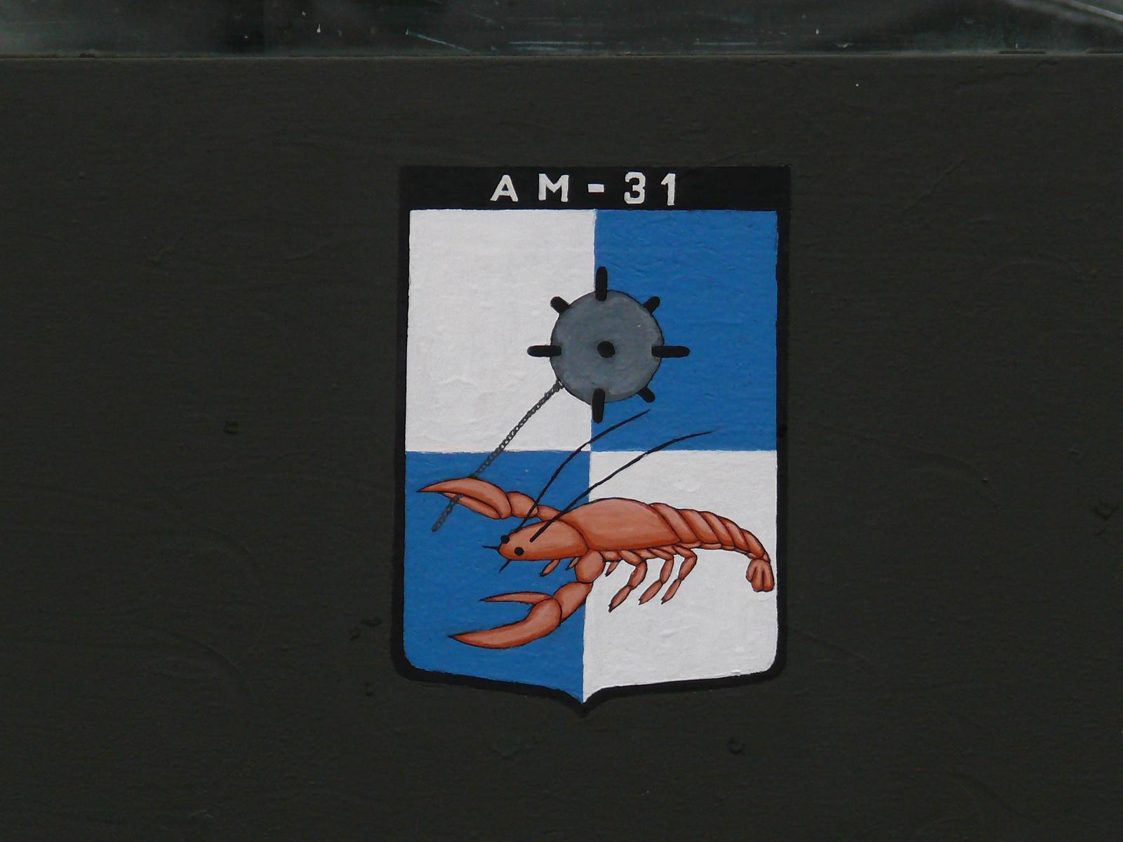 AM-31 naszád