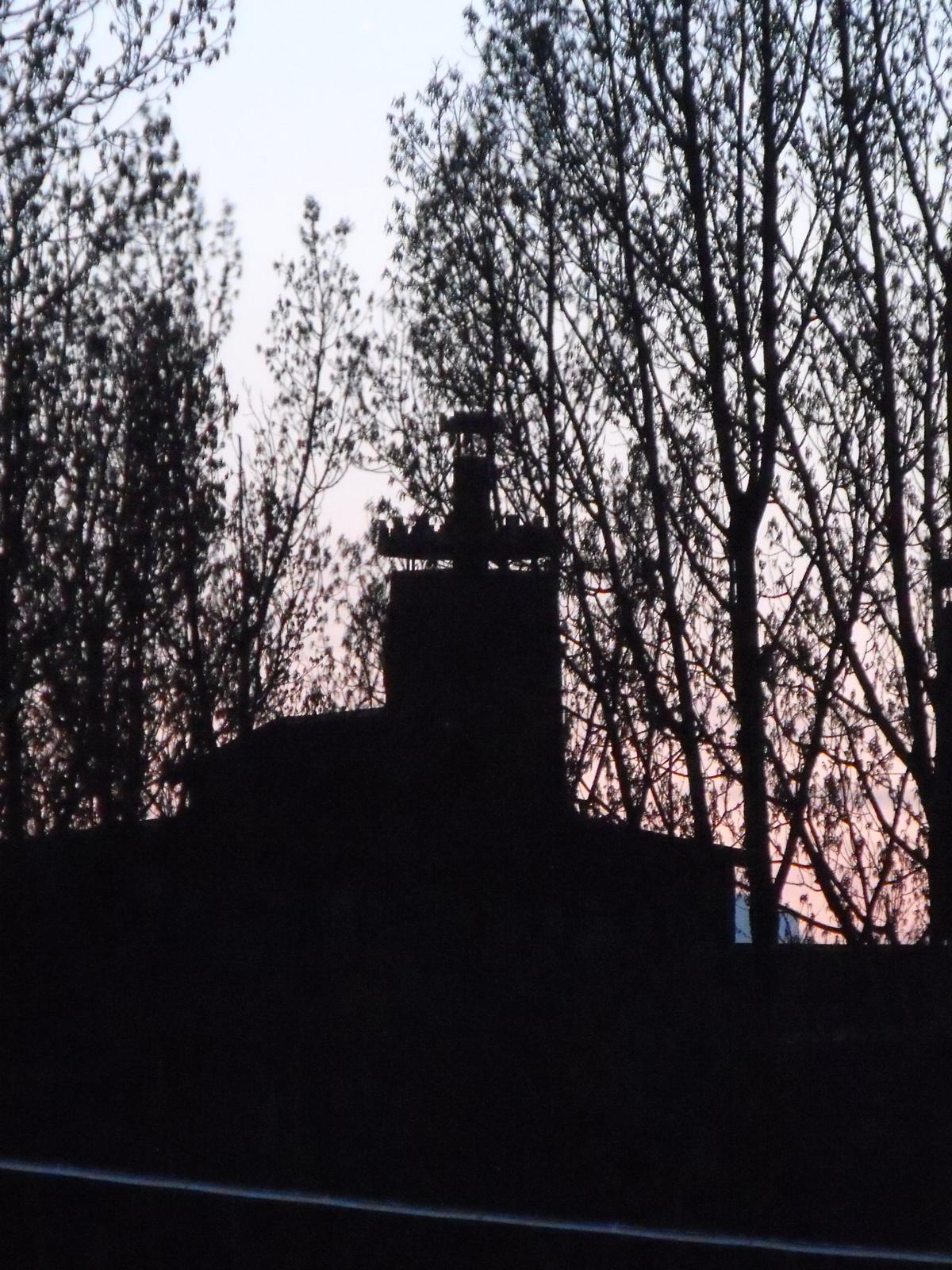 Kép 485